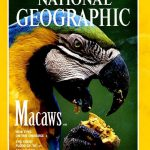 National Geographic January 1994-0