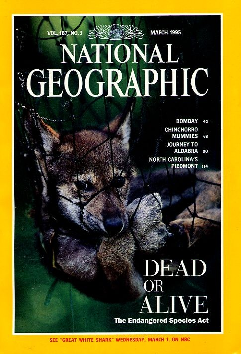 National Geographic March 1995-0